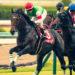 【競馬壁紙】サートゥルナーリア|パソコン(PC)・スマホ(iPhone11/XS/XR対応)